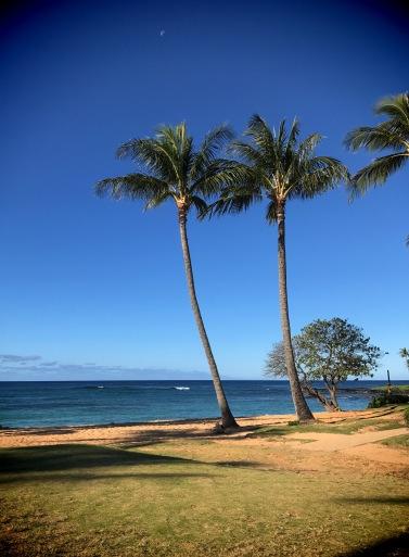Kauai view